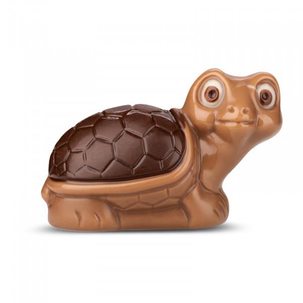 Schildkröte Zartbitter