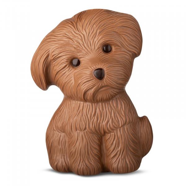 Hund in Geschenkpackung Edelvollmilch