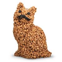 Wölkchen-Katze
